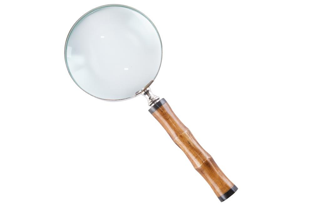 Magnifier with bone handle, 23.5x10x2.5cm 4x magnification