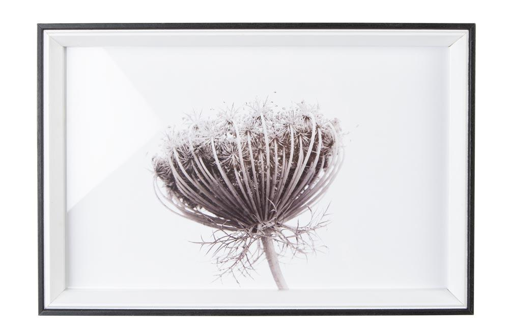 Wall art Flower, white/black,30x3x20cm